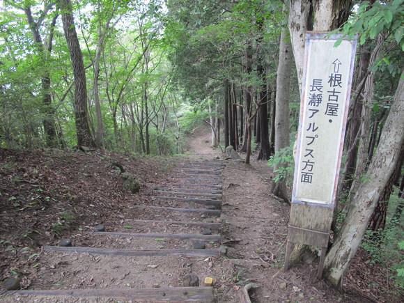寶登山で恒例の研修_d0130714_22442887.jpg