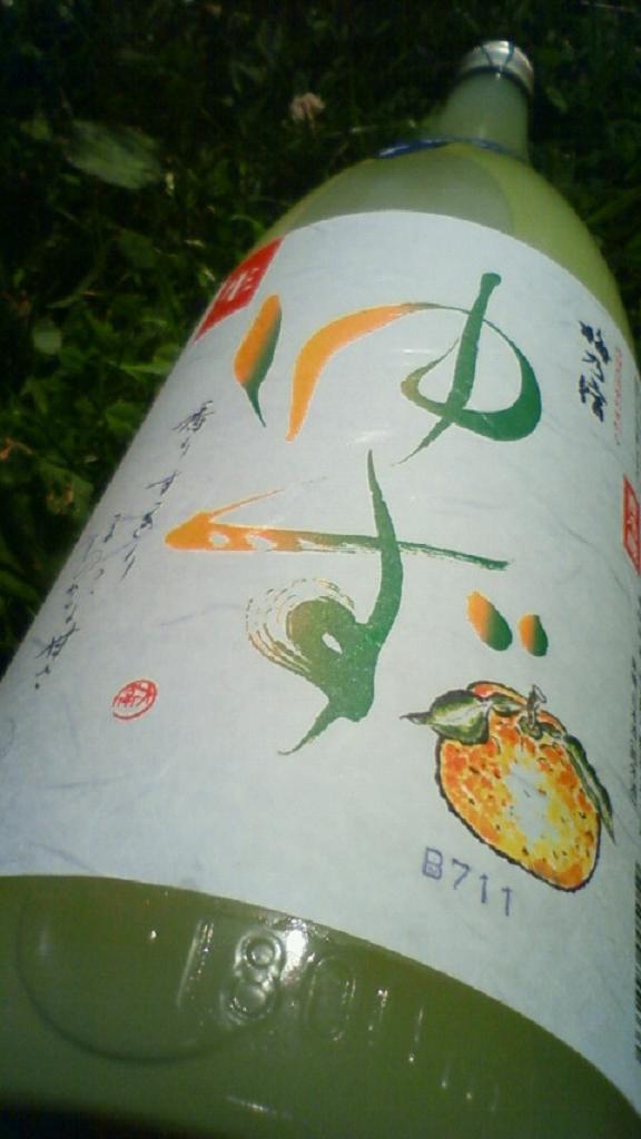 【果実系】 梅乃宿 クールゆず 限定生ver_e0173738_1113771.jpg
