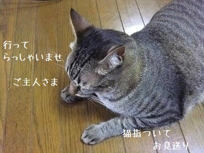 b0118850_9551024.jpg