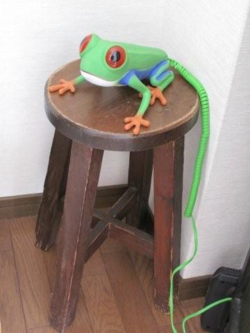 Frog phone_c0157558_221773.jpg