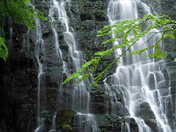 龍双が滝2_c0085877_7165650.jpg