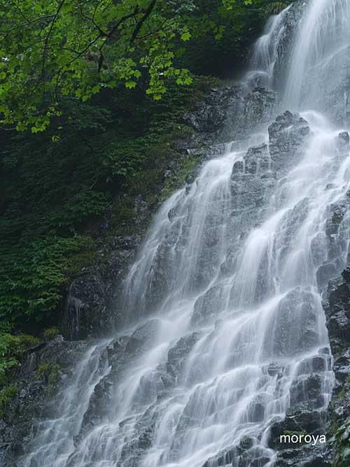 龍双が滝2_c0085877_717453.jpg