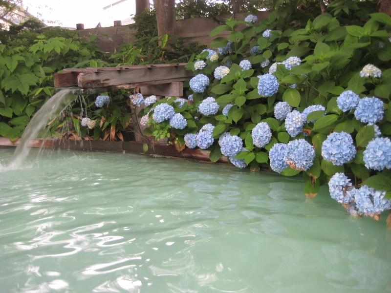 夏の津軽(6)野趣溢れる野天風呂@嶽温泉山楽_c0013687_6274696.jpg