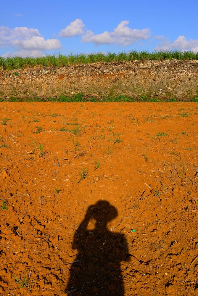 土の色_e0004009_04195.jpg