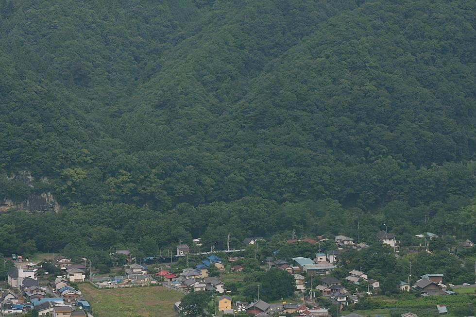 緑が迫る - 2011年盛夏・秩父 -_b0190710_2215128.jpg