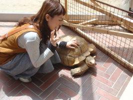 愛媛県 とべ動物園_e0176128_12404862.jpg