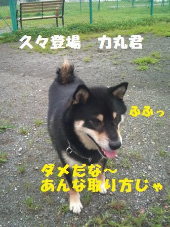 f0230380_16405079.jpg