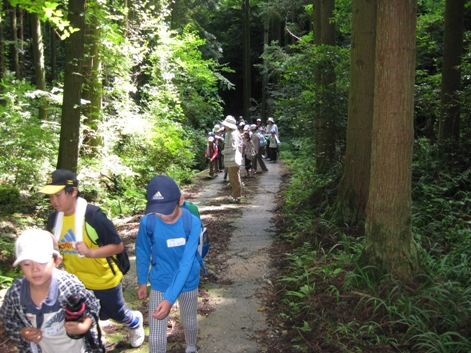 森を歩こう「国際森林年」のイベントを開催しました_a0213879_14362519.jpg