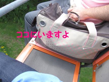 b0193480_19583521.jpg
