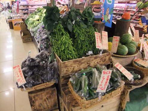 トマトの販売は終了!きゅうりは大豊作 【斉藤農園2011年夏】_e0146912_1212359.jpg