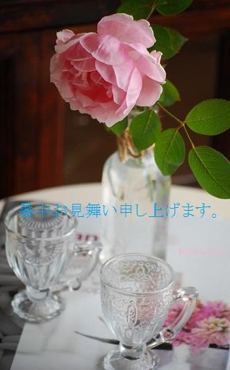 f0238135_14495196.jpg