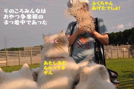 f0212597_22123331.jpg