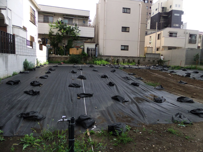 東京スナップ_b0103798_4554047.jpg