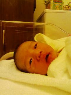 hanaya ・・・でした?・・・生まれました!!_f0239098_18593793.jpg