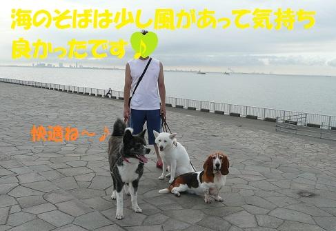 f0121712_2136752.jpg