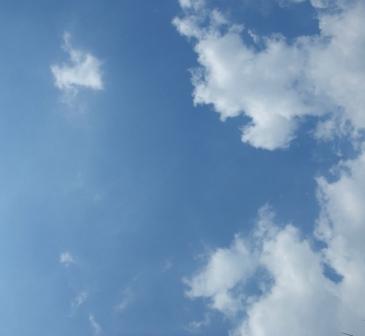 b0206085_21185858.jpg