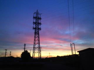 バラ色の夜明け_d0077106_14552935.jpg