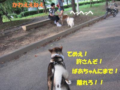 f0143123_203369.jpg