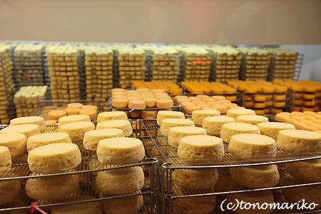 チーズ工場見学 ノルマンディー旅行_c0024345_2155293.jpg
