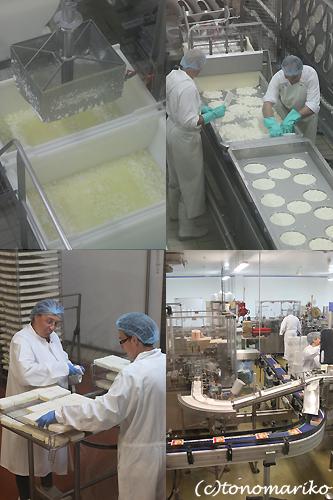 チーズ工場見学 ノルマンディー旅行_c0024345_2165128.jpg
