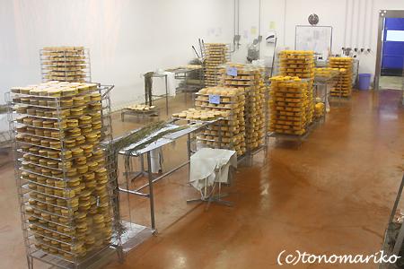 チーズ工場見学 ノルマンディー旅行_c0024345_21834.jpg