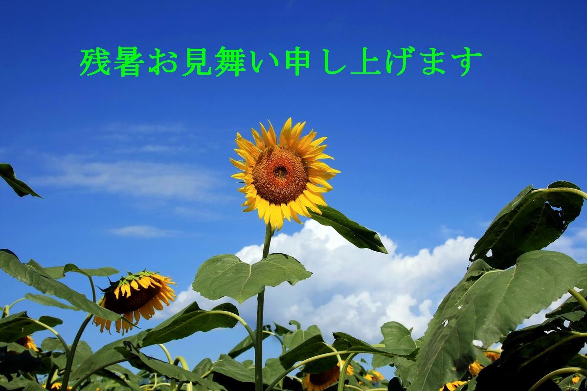 b0184848_14334248.jpg