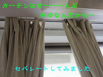 b0158061_20323931.jpg