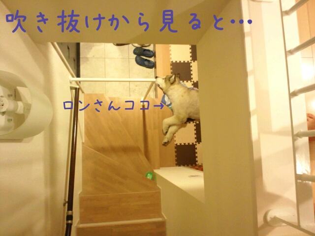 d0241911_949812.jpg