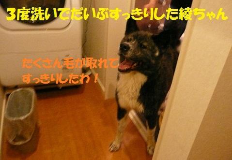 f0121712_154580.jpg