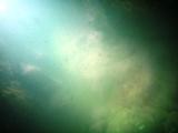 b0083040_17114750.jpg