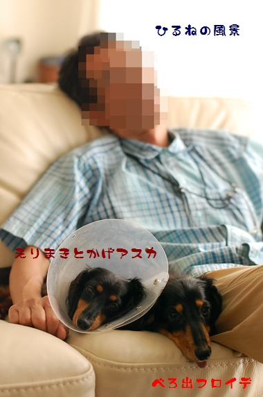 f0162078_8425551.jpg