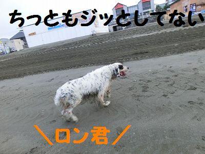 e0222588_1942221.jpg