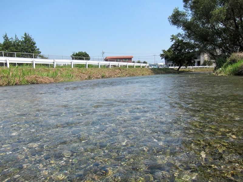 菊水苑のかき氷と菊沢川_f0138807_20282811.jpg