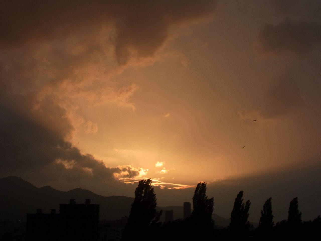 【今日の一枚】6日連続真夏日の夕暮れ_c0025115_19191135.jpg
