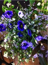 今週のお花_a0200423_20142694.jpg