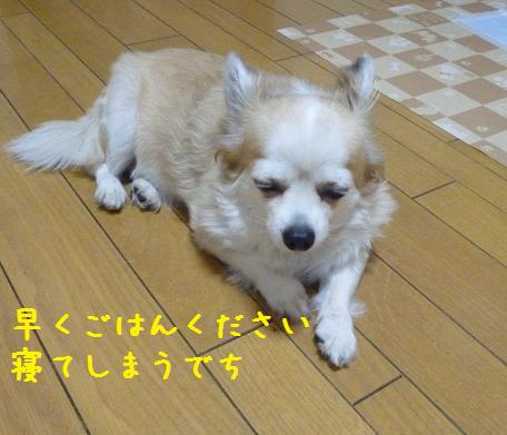 b0138430_2183740.jpg