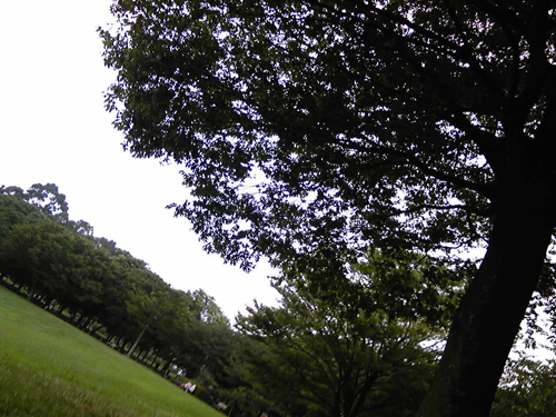 c0228974_157247.jpg