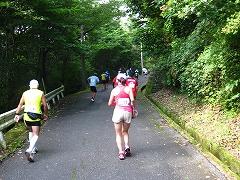 「奥武蔵ウルトラマラソン」初参加_a0036808_13531618.jpg