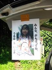 「奥武蔵ウルトラマラソン」初参加_a0036808_14132739.jpg