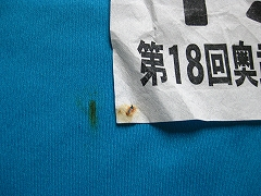 「奥武蔵ウルトラマラソン」初参加_a0036808_15585769.jpg