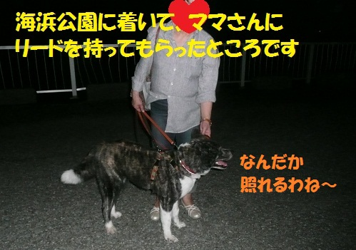 f0121712_1614571.jpg