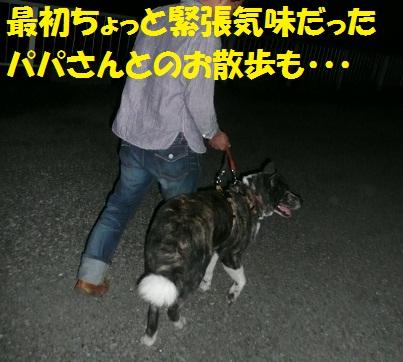 f0121712_16153672.jpg