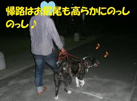 f0121712_1615462.jpg