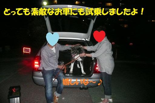 f0121712_16165381.jpg