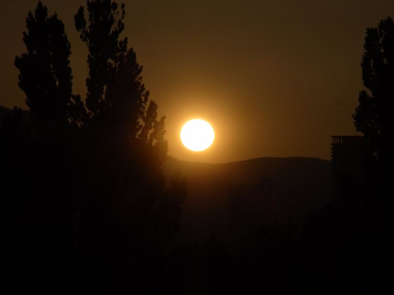 灼熱列島 北海道も熱帯夜から34℃弱まで_c0025115_1925380.jpg
