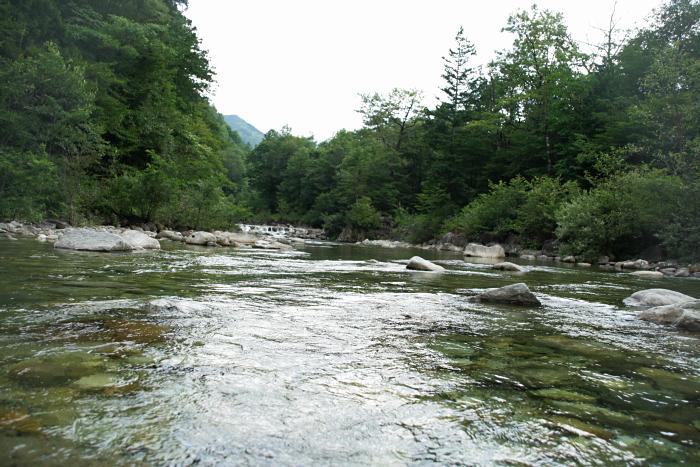 """キャンプ2011 再びあの""""森""""へ・・・『自然に囲まれて』_c0120834_11304560.jpg"""