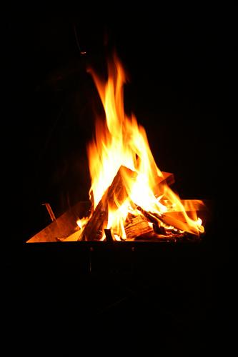 """キャンプ2011 再びあの""""森""""へ・・・『自然に囲まれて』_c0120834_11383013.jpg"""