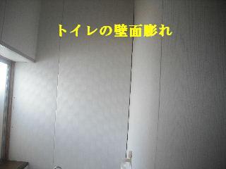f0031037_2027276.jpg
