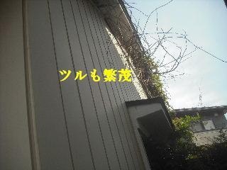 f0031037_20282968.jpg