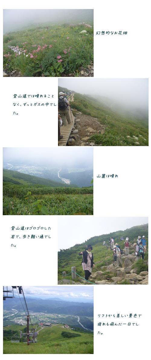 栂池自然園と八方尾根へ(2)_c0051105_16422611.jpg